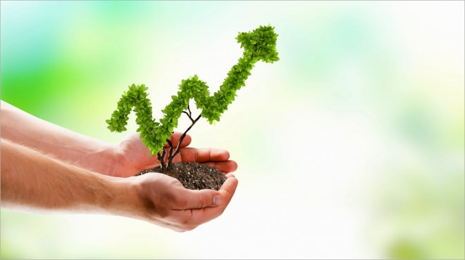 tips-for-growing-your-business-660x370