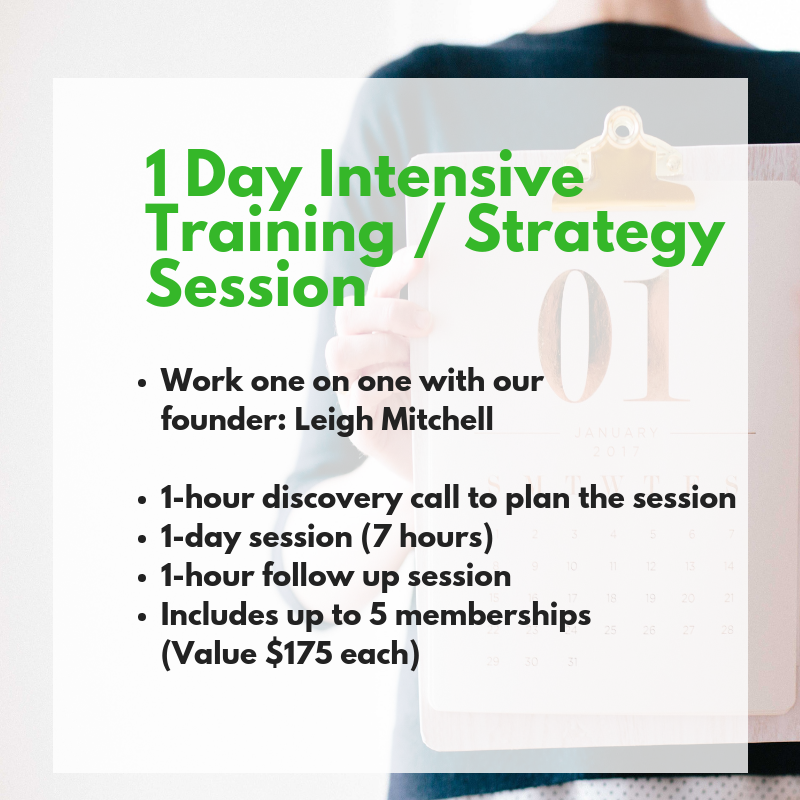Customized 1 Day Intensive Marketing Strategy Planning Session (Includes 1  year WIBN membership)